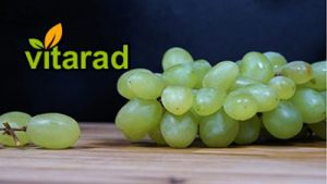 Price of grapes