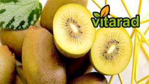 Yellow Kiwi production