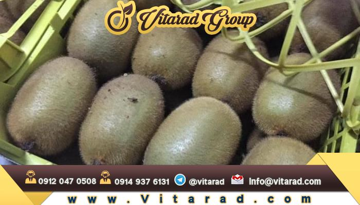 Organic fresh kiwi fruit