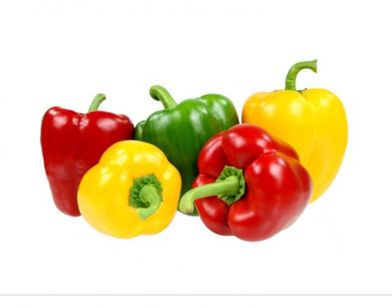 Which Sellers Are Selling High Quality Bell Pepper ?