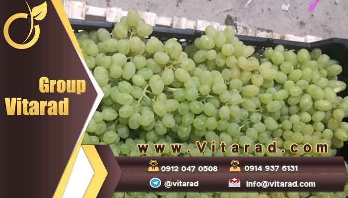 Prices of seedless grapes in the market